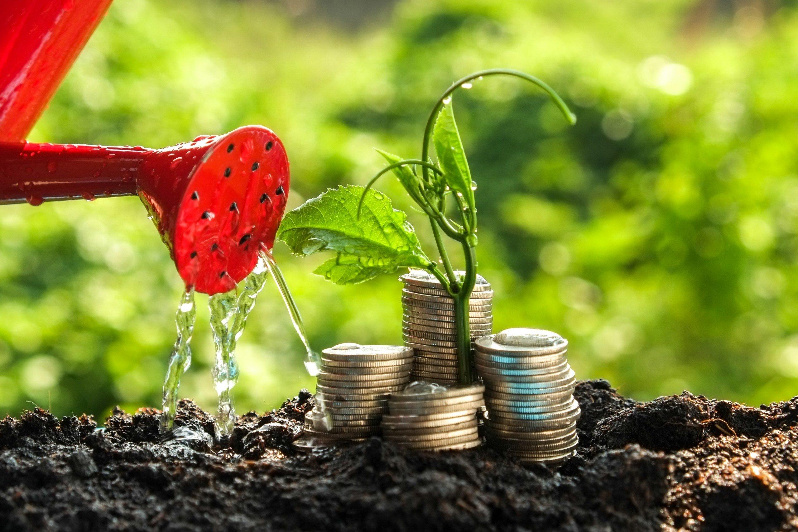sustainability investment